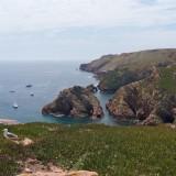 Inselküste